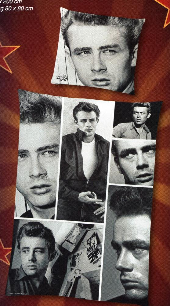 Bettwäsche Radio Days - James Dean - 135 x 200 cm - Baumwolle Renforcé